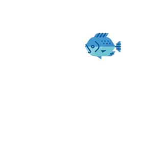 zona 47-50